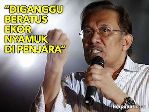 Thumbnail image for (Video) Anwar Ibrahim Diganggu Beratus-ratus Ekor Nyamuk Di Penjara