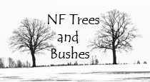 NF Trees n Bushes