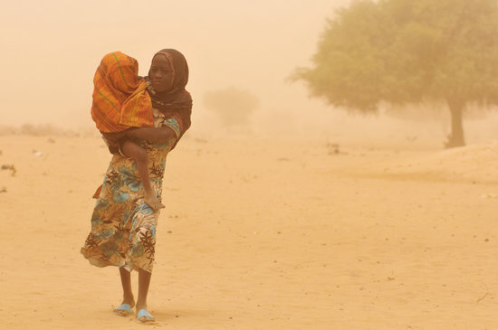 Africa: Drought affects food crops as millions go hungry.