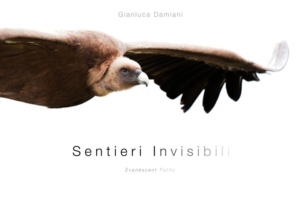 Sentieri Invisibili - Evanescent paths
