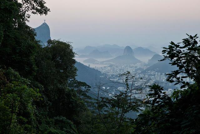 Fotografia, Rio de Janeiro, profissional, o globo, floresta da tijuca, imperador, vista, visual
