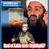 Hani el Kaide terör örgütüydü?
