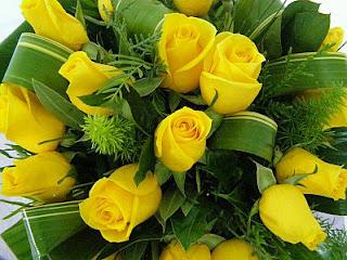 Fotos de Rosas Amarillas, parte 3