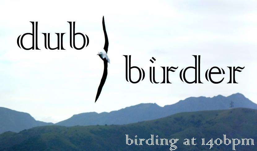 dub-birder