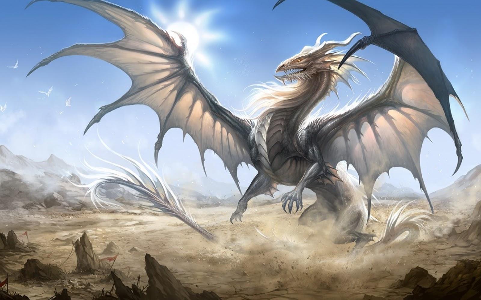 beter en de draak