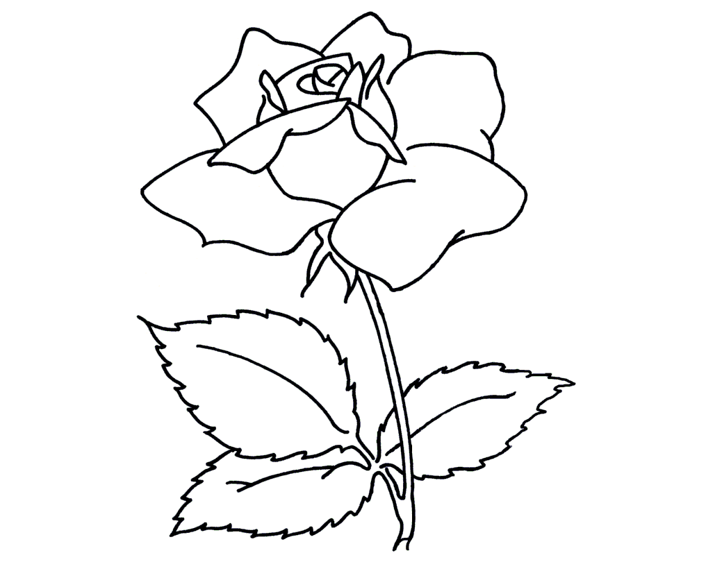 Beautiful flower coloring drawing free wallpaper - Beautiful Flowers For Kid Coloring Page Free Wallpaper