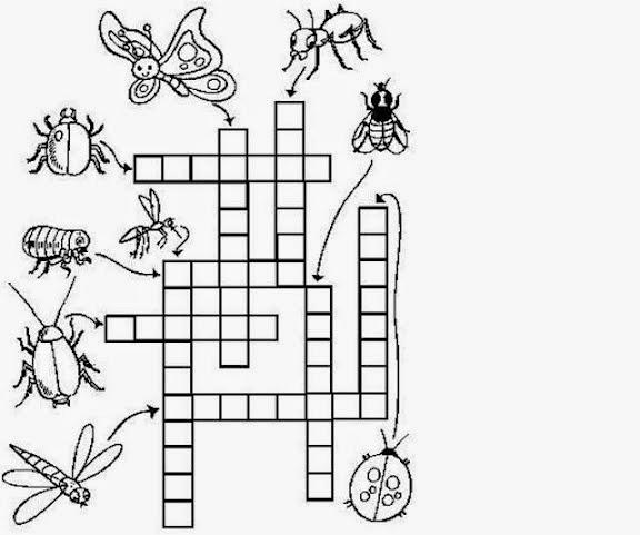 cruzadinha de inseto