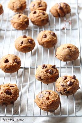 Vegan, Gluten Free Pumpkin Chocolate Chip Cookies