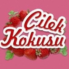 http://cilekkokususonbolumuizle.blogspot.com.tr/