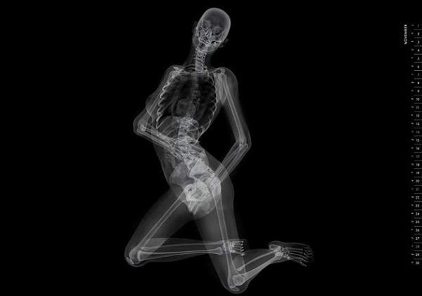 Kalendar bogel versi x-ray