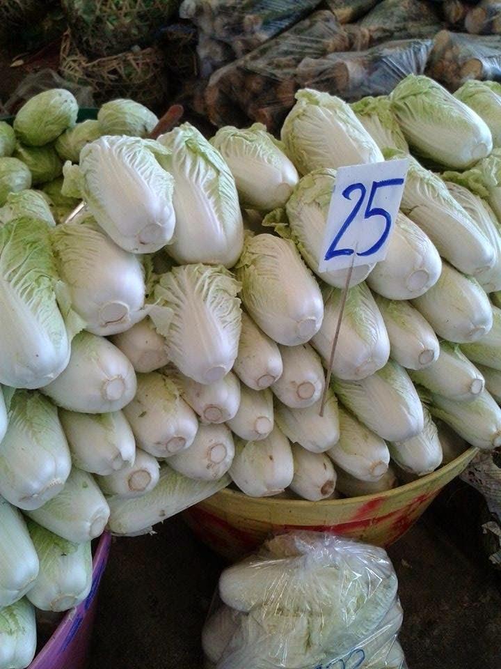 ราคา ผักกาดขาว