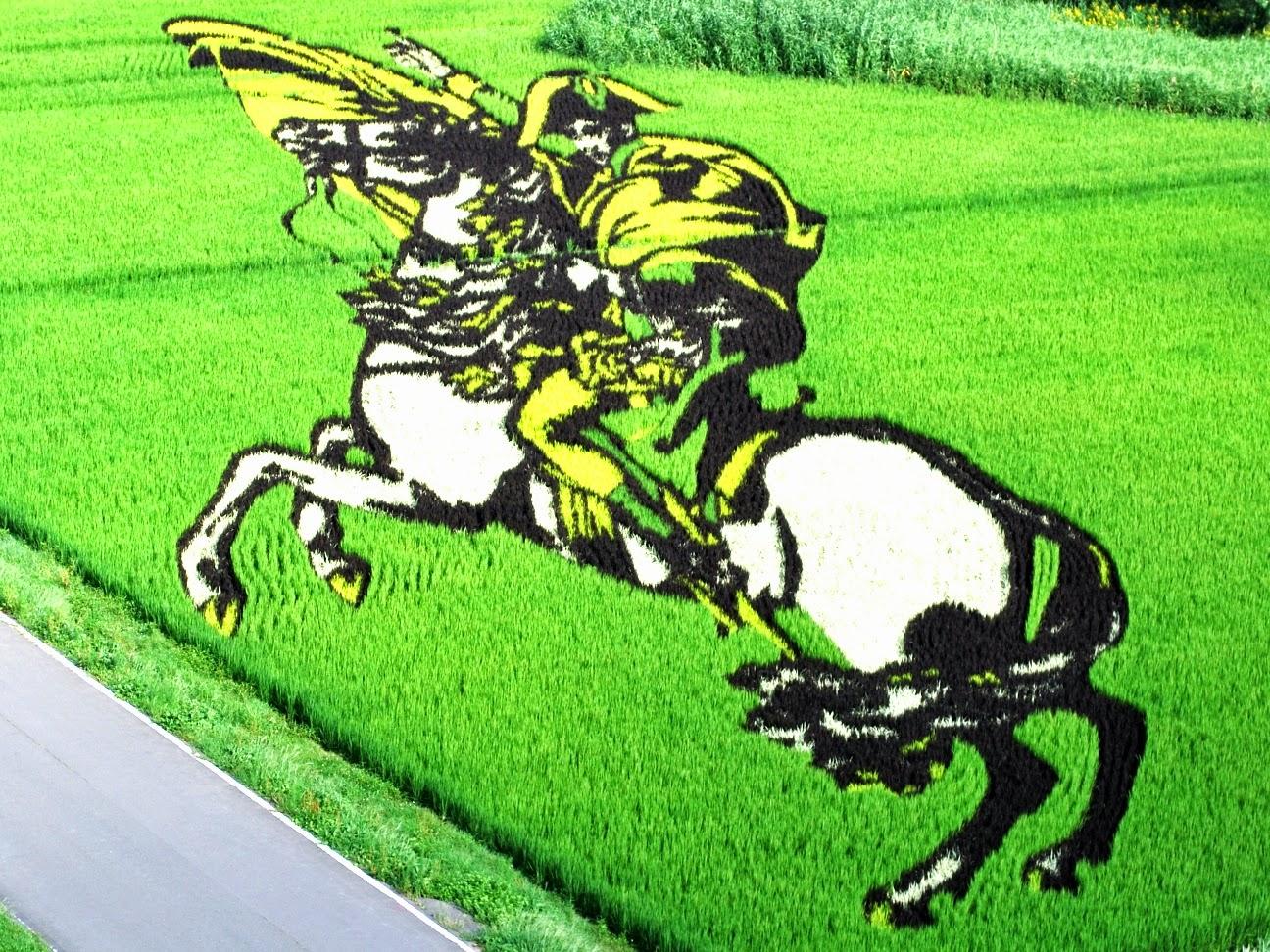 Inakadate il villaggio dell'arte del riso