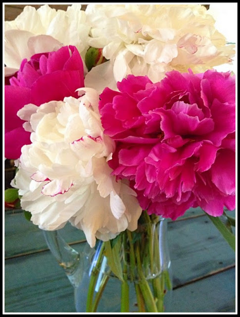Peonies Are Great Flowers For Cutting Content In A Cottage
