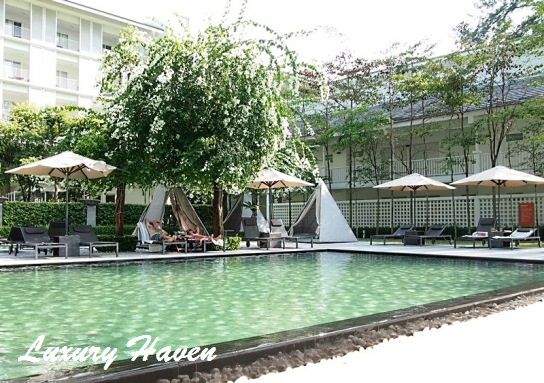 lone pine hotel penang infinity salt water pool view