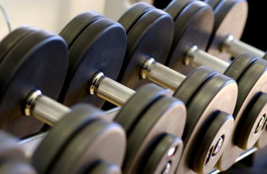 El gimnasio no es para valientes ii el tocador de for Gimnasio musculacion