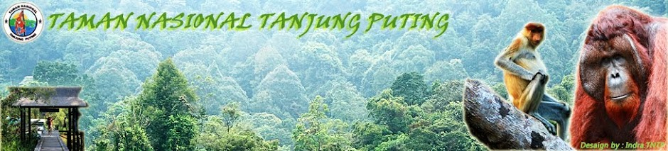 TN - TANJUNG PUTING
