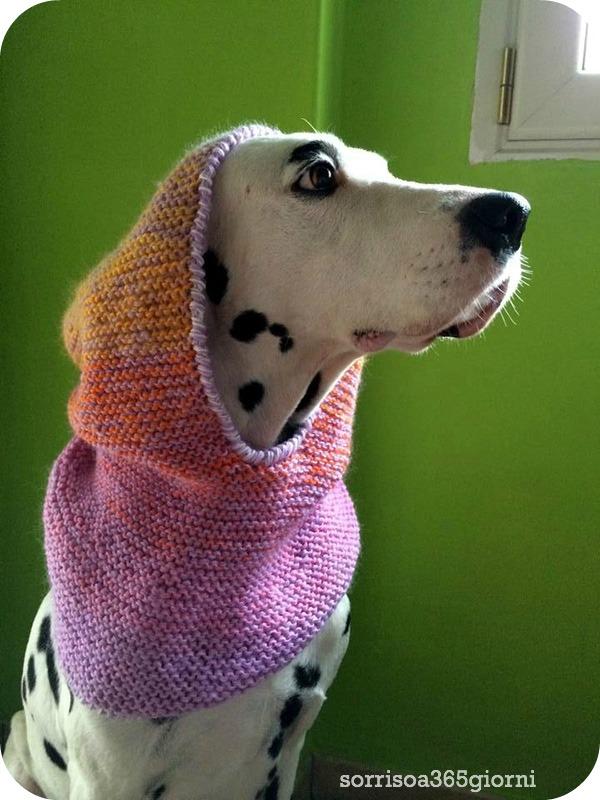 sorrisoa365giorni-tricot-cappuccioindossato-barone