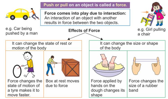 Grade 3 science worksheets forces