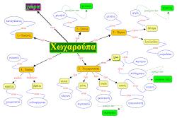 Εννοιολογικός χάρτης για τα επίθετα