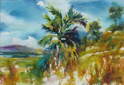 Watercolors By Eileen The Old Palm