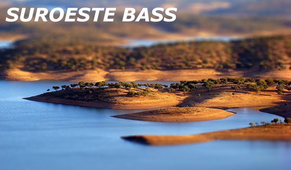 Suroeste Bass