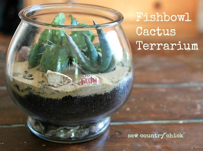 terrarium garden cactus