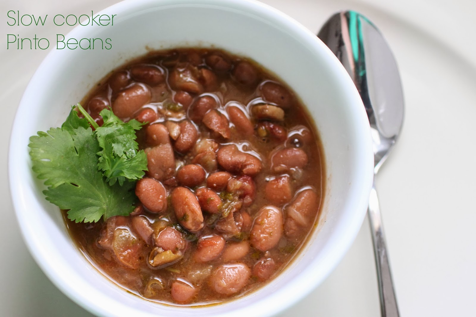 SLOW COOKER RECIPE PINTO BEANS | slow cooker recipes