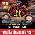 http://www.humaliwalayazadar.com/2014/10/kumail-ali-nohay-2015.html
