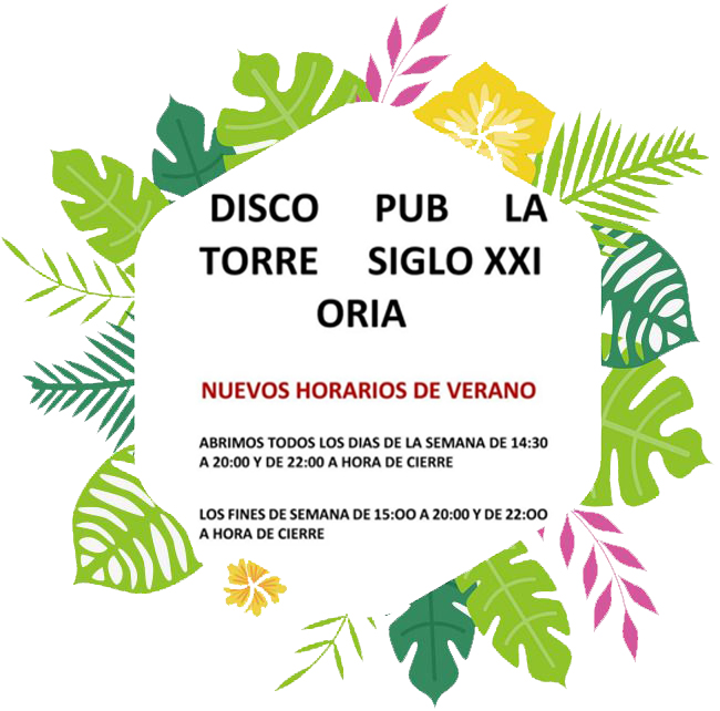 Disco-Pub La Torre s. XXI