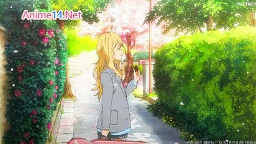 Phim Tháng Tư Là Lời Nói Dối Của Em /Shigatsu wa Kimi no Uso