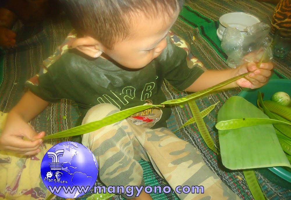 Gigin akhirnya bisa juga membuka biji Peuteuy Selong dari cangkangnya.
