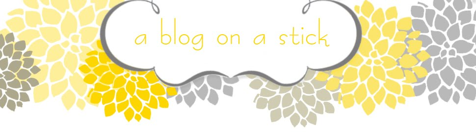 A Blog On A Stick