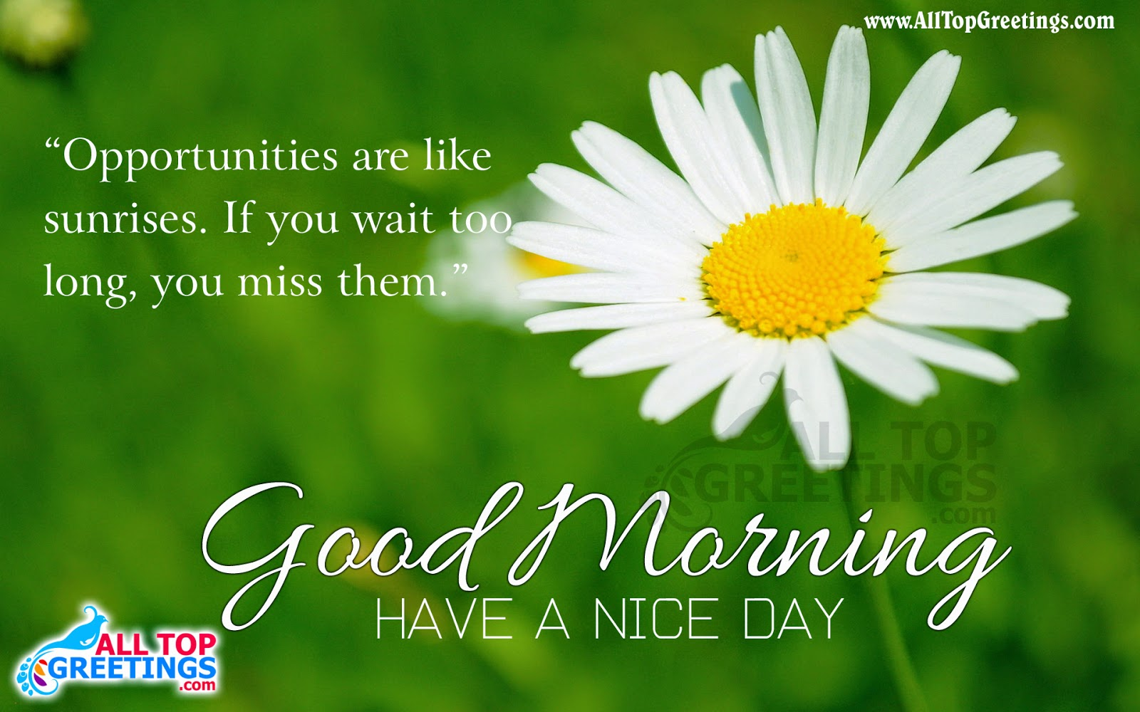 English Good Morning Greetings With Quote All Top Greetings