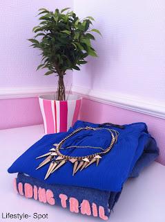Mini shoplog: Zara en H&M