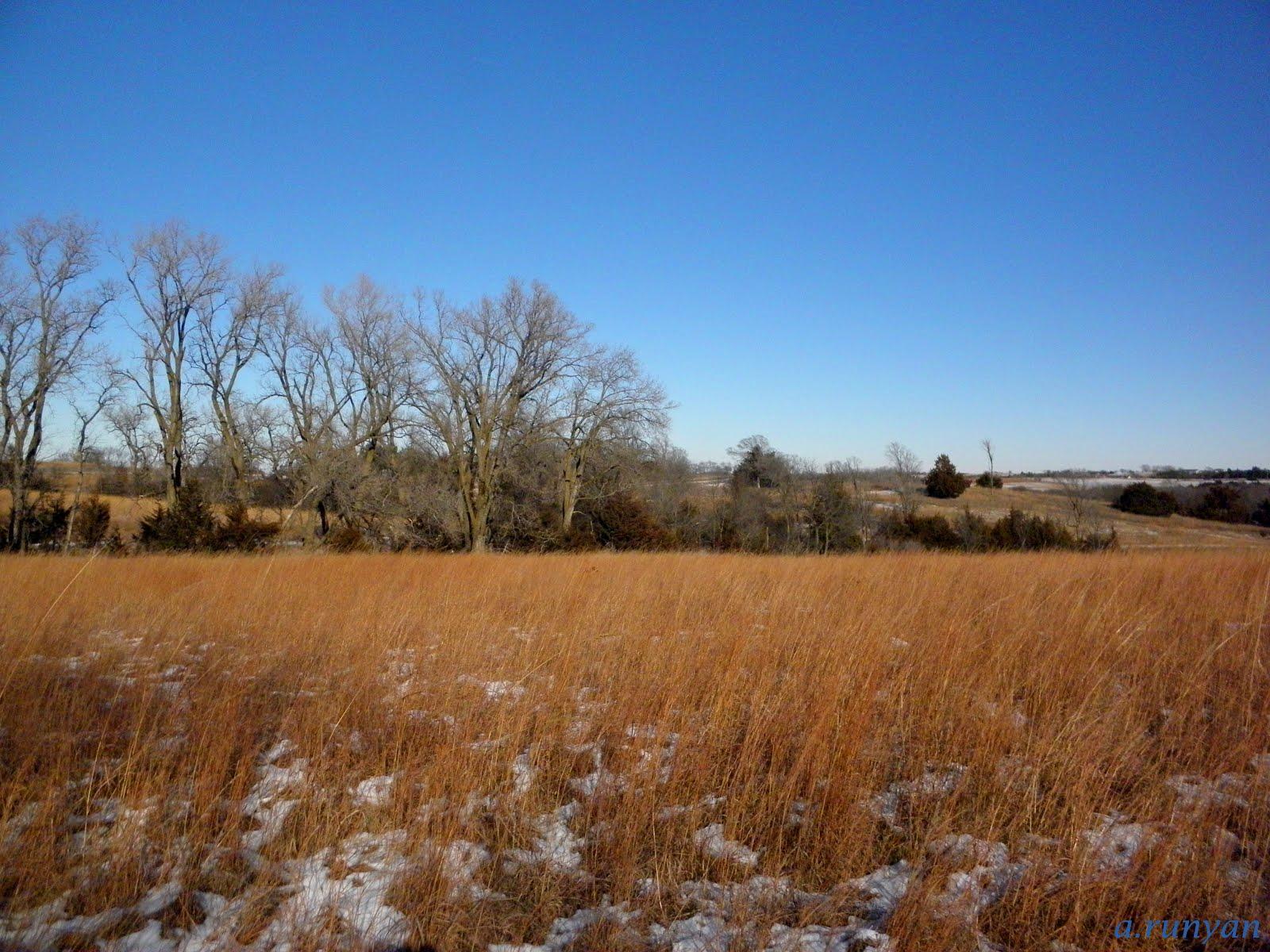 Nebraska Prarie Landscape