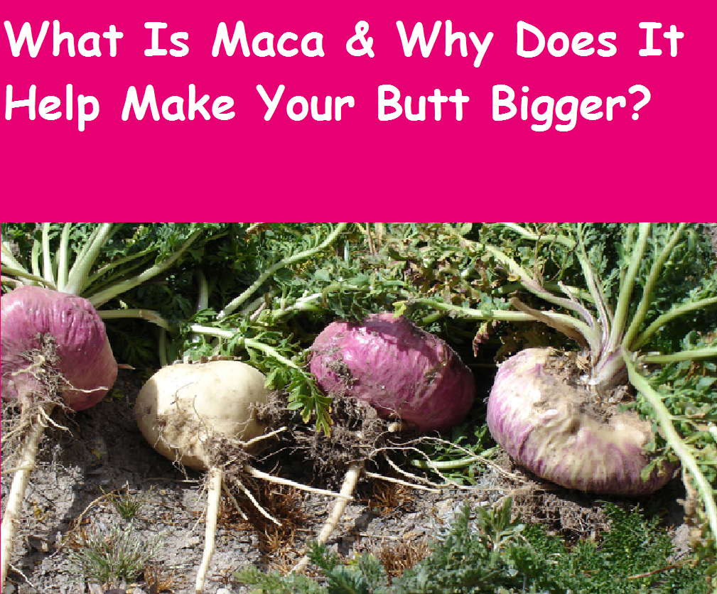 Natural curves diaries quot what is maca quot amp why does it make your butt