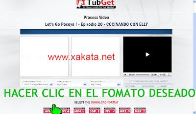 descargar vídeos de youtube online - paso 3
