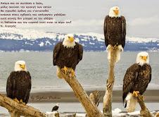 Η κραυγή των αετών