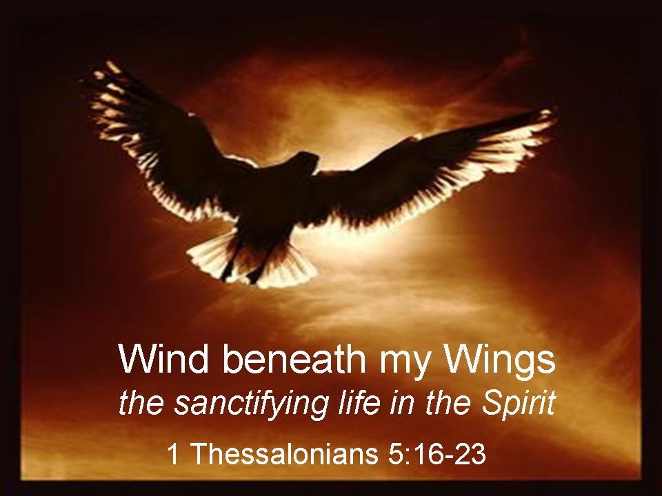 wind beneath my wings lyrics