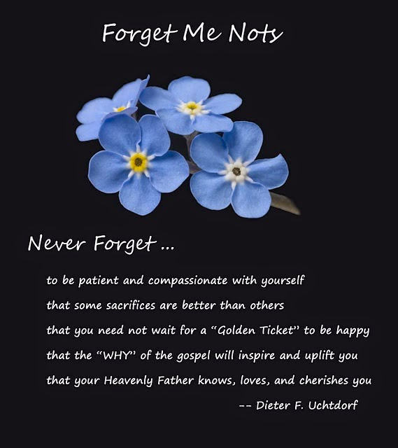 Forget Me Nots by Uchtdorf