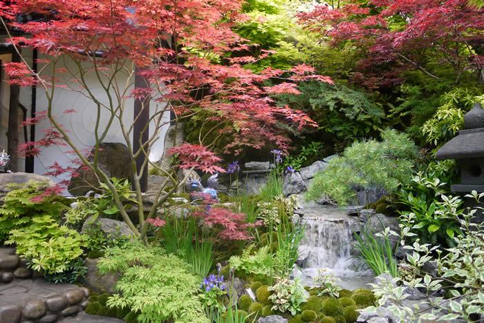 Japanese zen garden for Japanese garden water feature