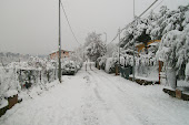 Neve!! feb 2012