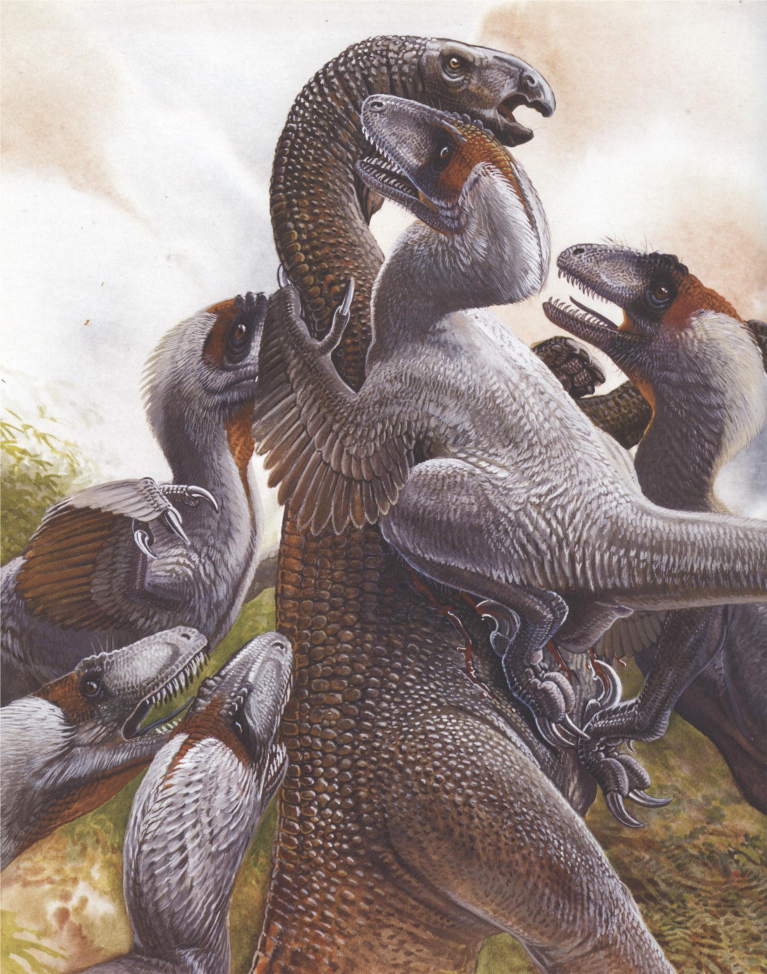 bensozia: Feathered Dinosaurs by Peter Schouten