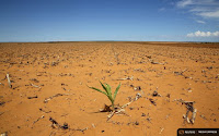 Poorer countries like many in Africa will have their food supply threatened most by climate change. (Credit: Reuters) Click to Enlarge.
