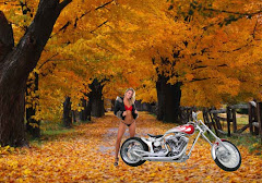 Harley Davidson Free Wallpapers 003 Beautiful Girl Standing Bike Autumn