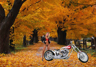 Harley Davidson Free Wallpapers Beautiful Girls waiting for a ride near bike in Autumn Trees background