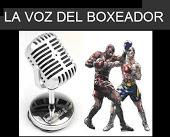NOTICIAS DEL BOX ARGENTO