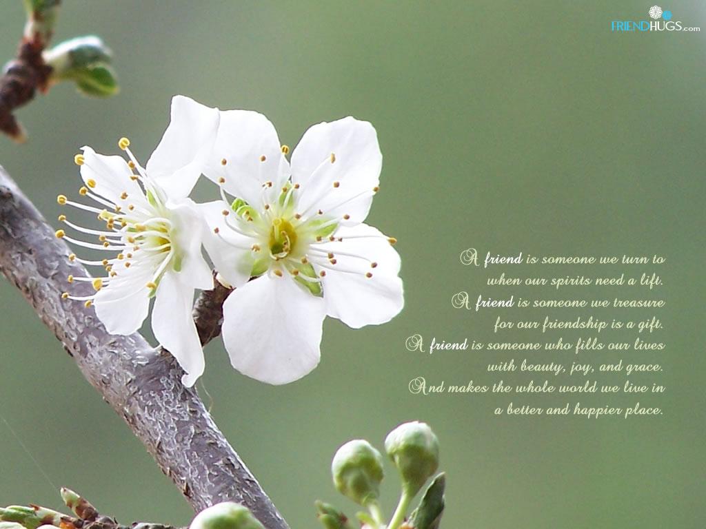 http://3.bp.blogspot.com/-GynzrBLd7u4/Tcpy-HvUzuI/AAAAAAAAAXs/f0l9_N_2H4k/s1600/friendship-poem-wallpaper5.jpg