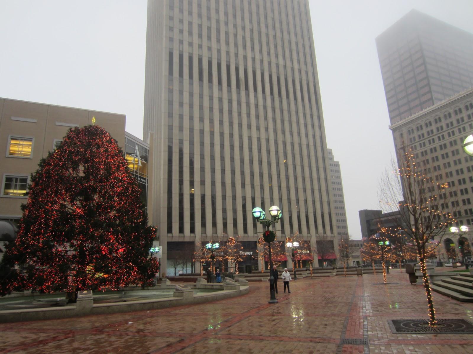 Whole Foods Christmas Trees