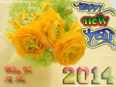 Latest Beautiful Happy New Year 2014 Photos